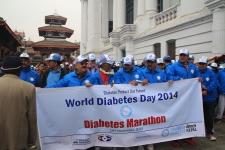 Diabetic walk 2014, 15